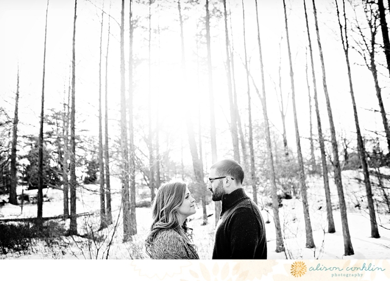 tarin and ramin engagement - two little birds planning